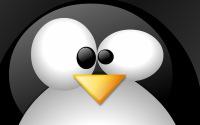Comment installer un programme sur Linux ? Très facile !
