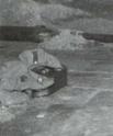 Les troupes SS