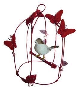 كيفية اختيار وانتقاء الطائر