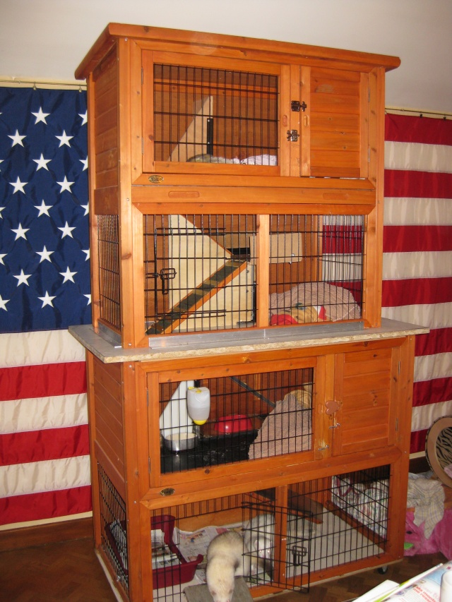 Cage artisanale - Le bon coin de meurthe et moselle meuble ...
