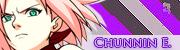 Chunnin Elite