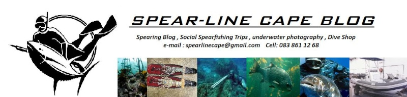 Spear-Line Cape
