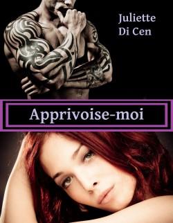 appriv11.jpg