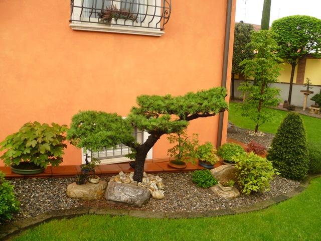Bonsaicaffe garden for Creare angoli di giardino