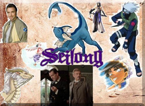 Seilong