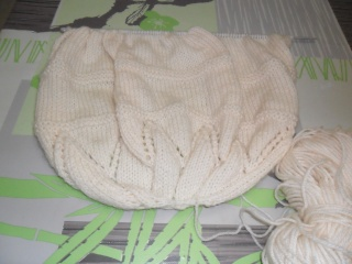 http://i79.servimg.com/u/f79/16/69/07/11/bonnet12.jpg