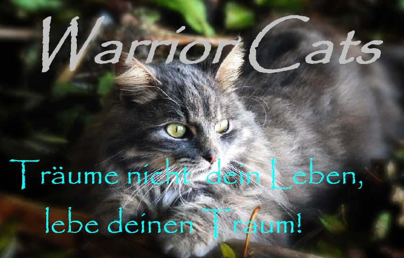 Warrior Cats RPG