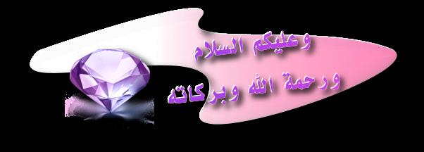 salamd11.png